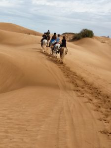 Geführter Reiturlaub mit Sieglinde Schauer in Marokko.